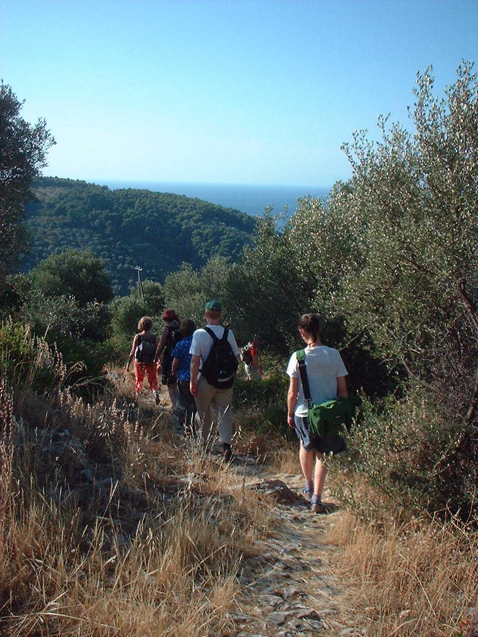 Group walk down the mule track