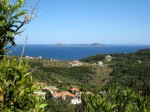 A view of the sea and olive groves on Alonnisos